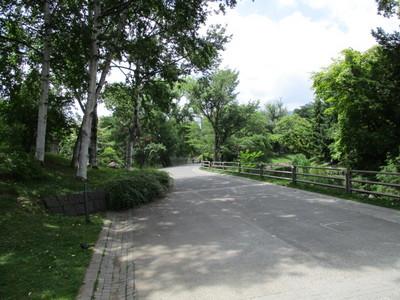 01中島公園 (10).JPG