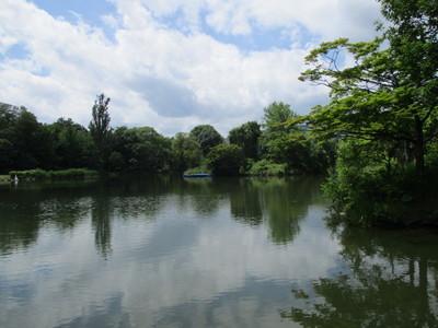 01中島公園 (4).JPG