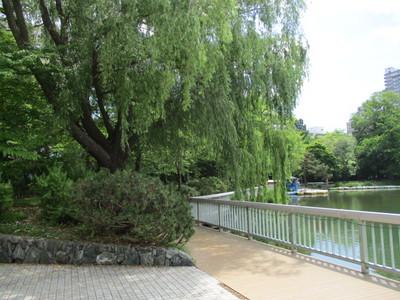 01中島公園 (7).JPG