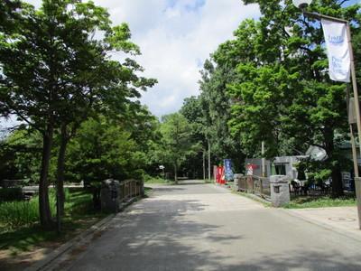 01中島公園 (8).JPG