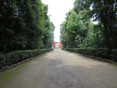 01井草八幡宮 (27).JPG