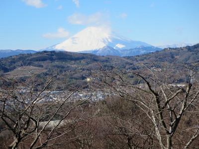 01吾妻山公園 (16).JPG