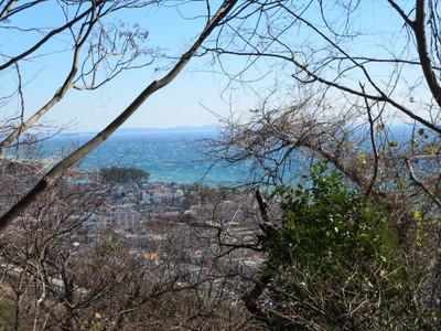 01吾妻山公園 (8).JPG