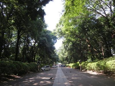 01大宮八幡宮 (9).JPG