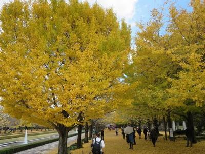 01昭和記念公園 (13)a.jpg