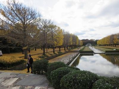 01昭和記念公園 (7)a.jpg