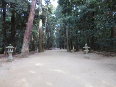 01鹿島神宮 (22).JPG