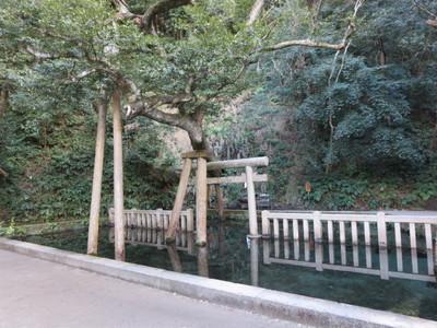 01鹿島神宮 (31).JPG