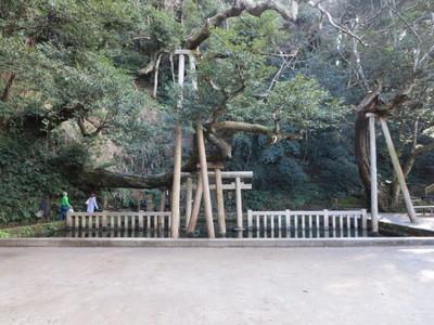 01鹿島神宮 (34).JPG