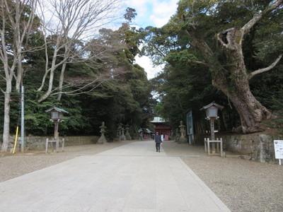 01鹿島神宮 (4).JPG