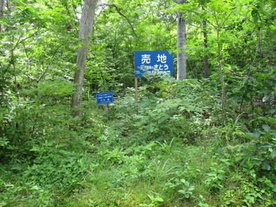 01鹿部リゾート (43).JPG