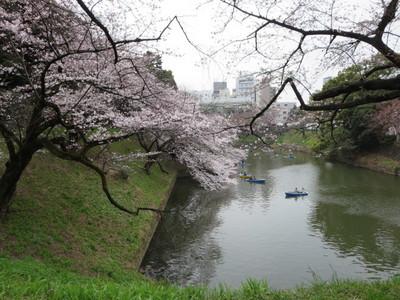 02北の丸公園 (27).JPG