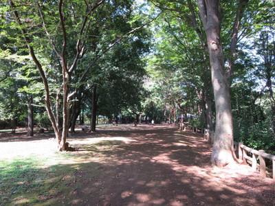 02和田堀公園 (2).JPG