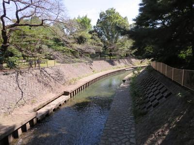 02和田堀公園 (4).JPG