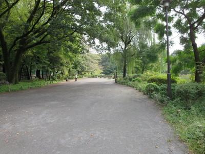 02善福寺公園 (23).JPG