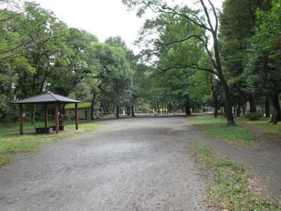 02善福寺公園 (26).JPG