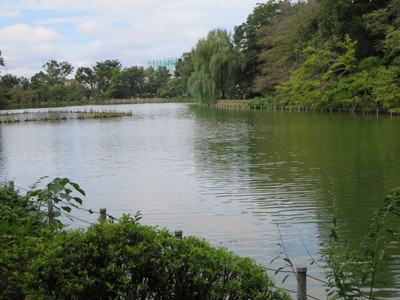 02善福寺公園 (4).JPG