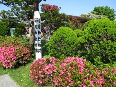 03元町 (52).JPG