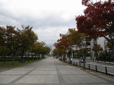 05なぎさ公園 (21).JPG