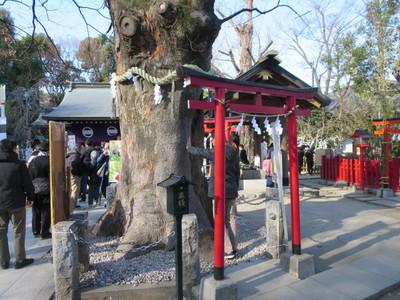 05新田神社 (3).JPG