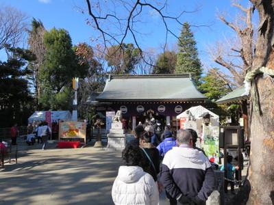 05新田神社 (5).JPG