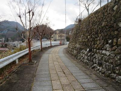 07安楽寺 (1).JPG