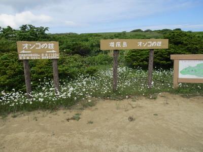 07焼尻島 (16).JPG