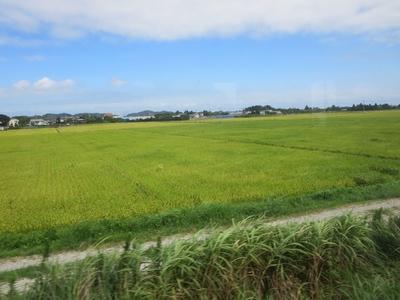 087外房風景 (2)a.jpg
