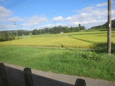 128小湊鉄道風景 (3)a.jpg