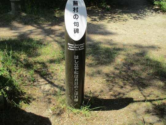 20天橋立 (55).JPG