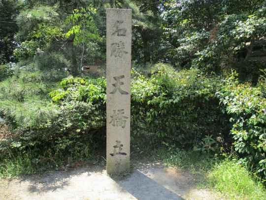 20天橋立 (62).JPG