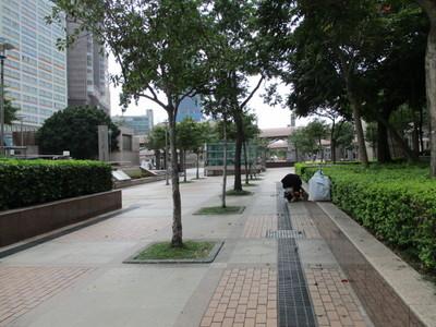 21台北駅 (9).JPG