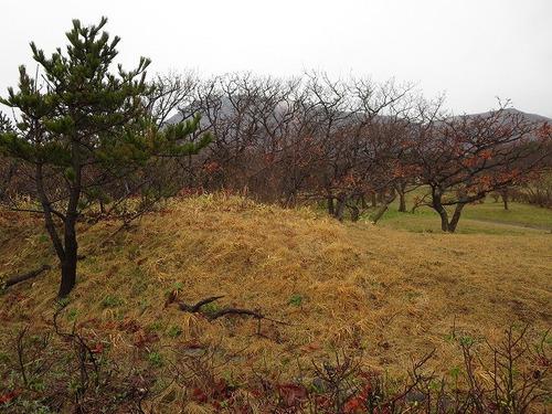 01恵山岬温泉 (10).jpg
