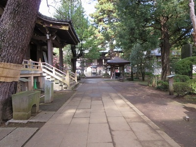 2014.11.30平林寺 014-2.jpg