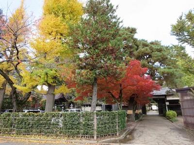 2014.11.30平林寺 020-2.jpg